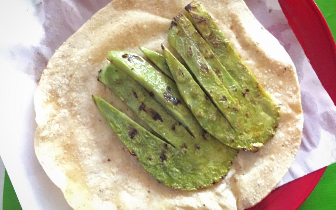 5 surprising health benefits of eating Nopal cactus