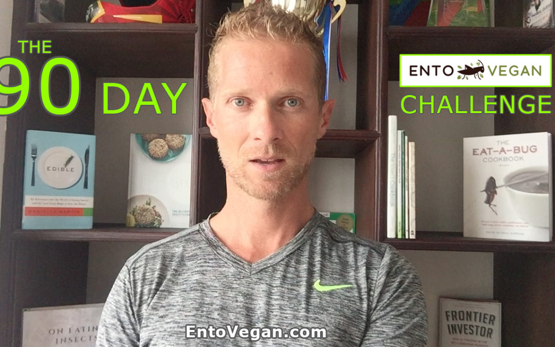 VIDEO – 90 Day Entovegan Challenge Overview